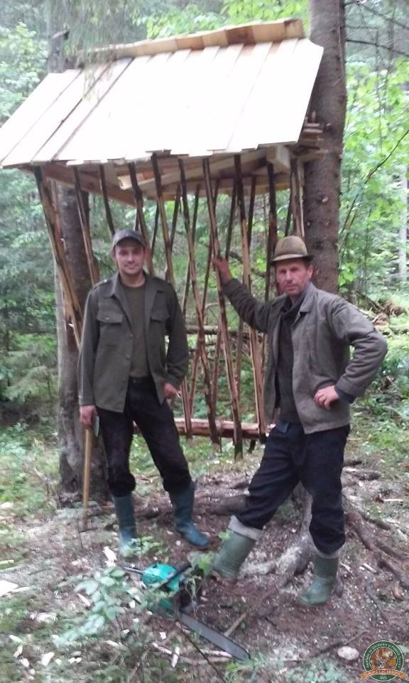 avps-lr-hunters-dragosa_25-3