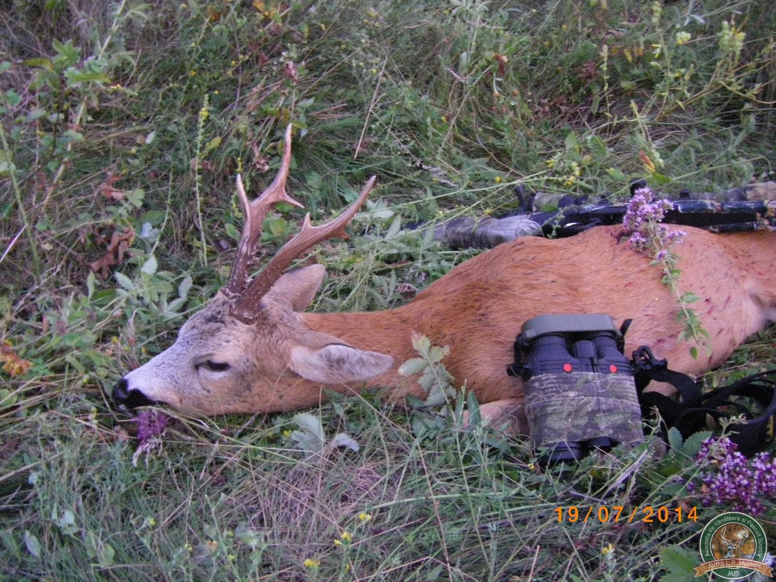 avps-lr-hunters-garceni_4-40