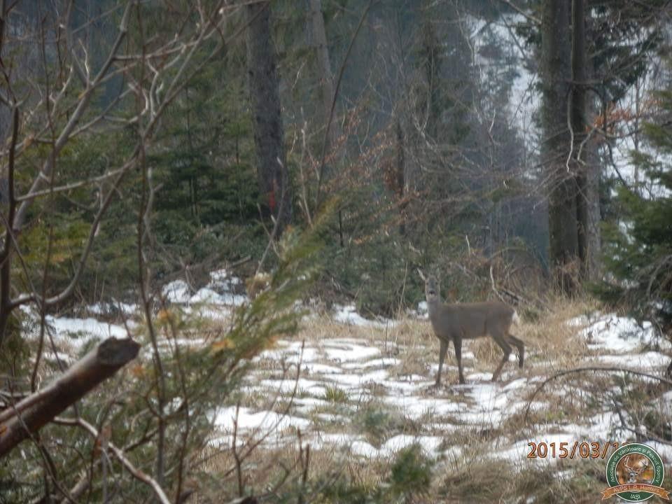 avps-lr-hunters-lepsa_20-25