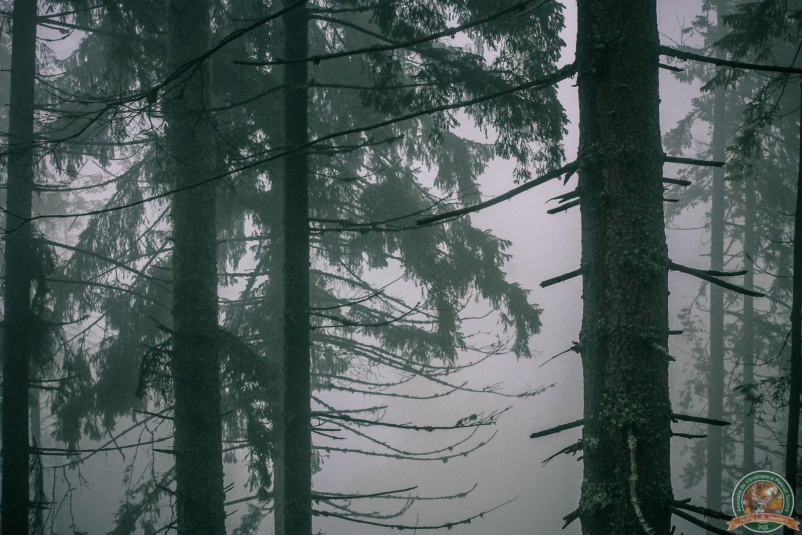 avps-lr-hunters-lepsa_20-81